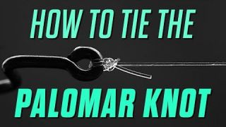 Are you really tying your Palomar the right way?