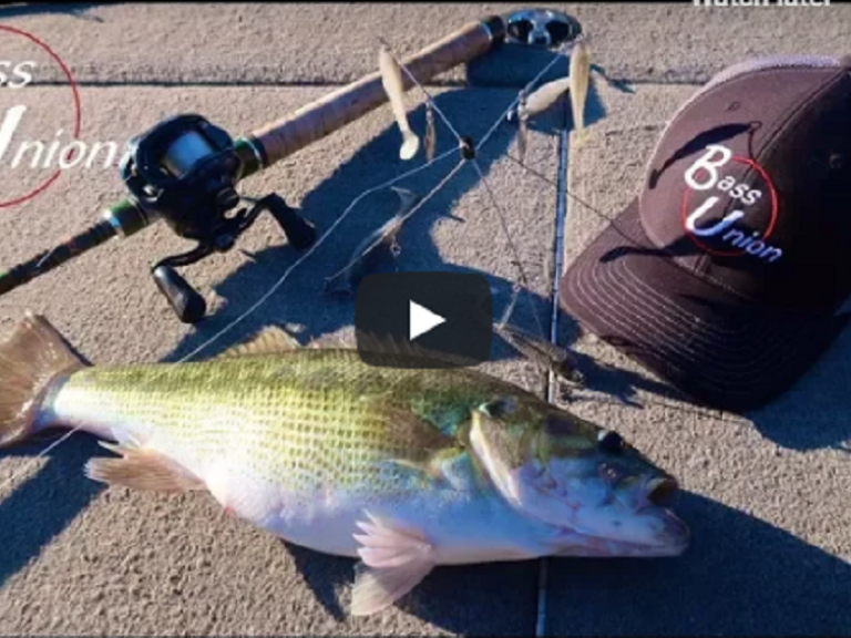 On the Water Fishing Report VIDEO - Catching Spring Pre-spawn Spotted Bass On Lake Oroville""