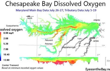 Best Ever Oxygen Levels in Chesapeake Bay
