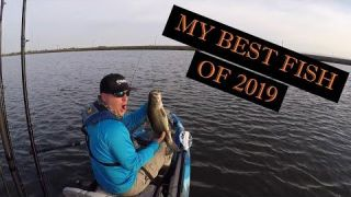 My Top Fish of 2019