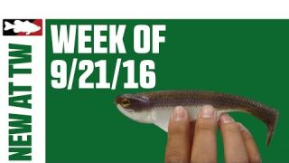 What's New At Tackle Warehouse | Sept 21