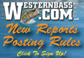 WesternBass Reports