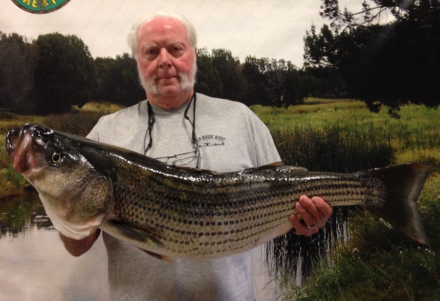 21 pound striper from lake pleasant for Big lake az fishing report