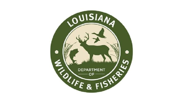Men cited for fraudulent boat registration applications for Ldwf fishing license