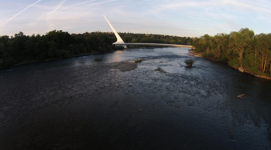 Sacramento river closure to go into effect april 1 for Sacramento river fishing spots