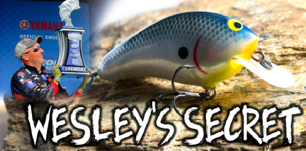3 Lures for 2 Bassmaster Elite Series Shallow Water Wins with Wesley