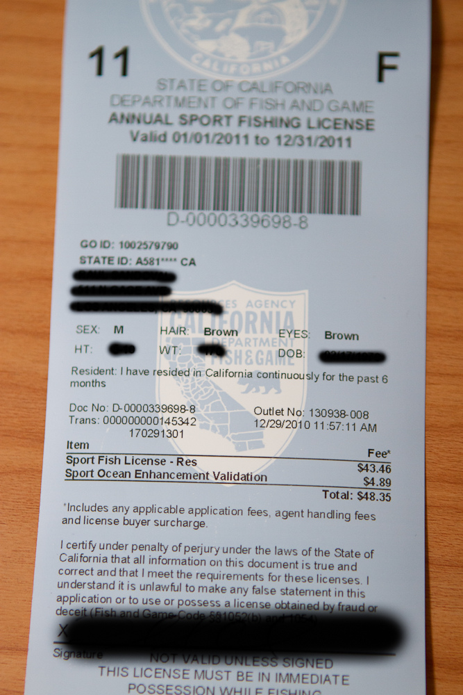 Fishing license sales online vs brick and mortar stores for Purchase florida fishing license