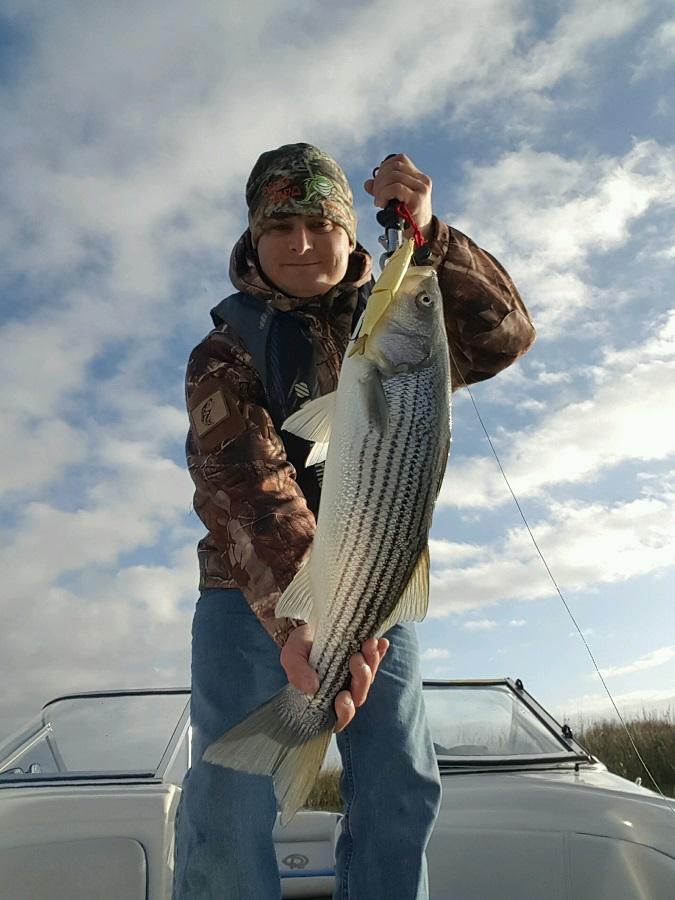 Comprehensive Delta Fishing Report Update June 10