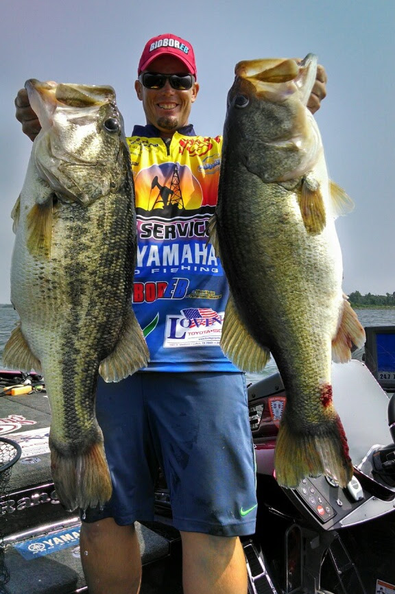 Giant Bass And Record Breaking Limits Are Predicted For Next Toyota Bassmaster Texas Fest Westernbass Com