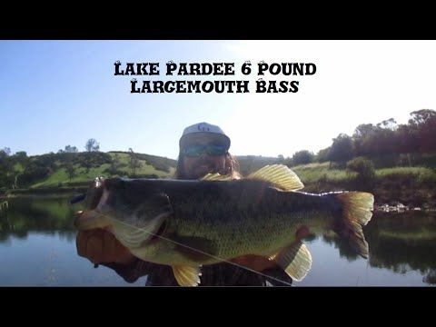 6 pound largemouth bass on 6lb test p line fishing at lake for Lake pardee fishing report